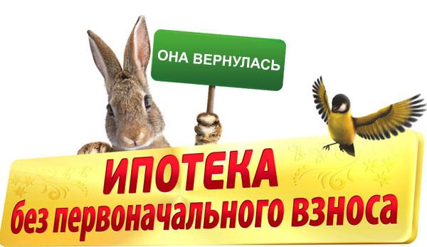 В России вернулась ипотека без первоначального взноса